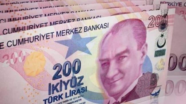 Kağıt Paranın Hammaddesi Nedir?